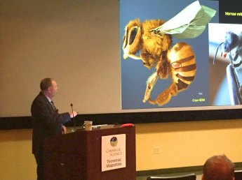 USDA ARS scientist, Gary Bauchan, explains new research describing the feeding behavior of Varroa mites on Honey Bees